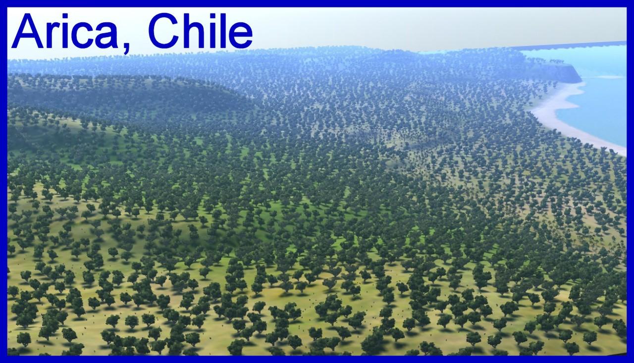 Arica-view.jpg