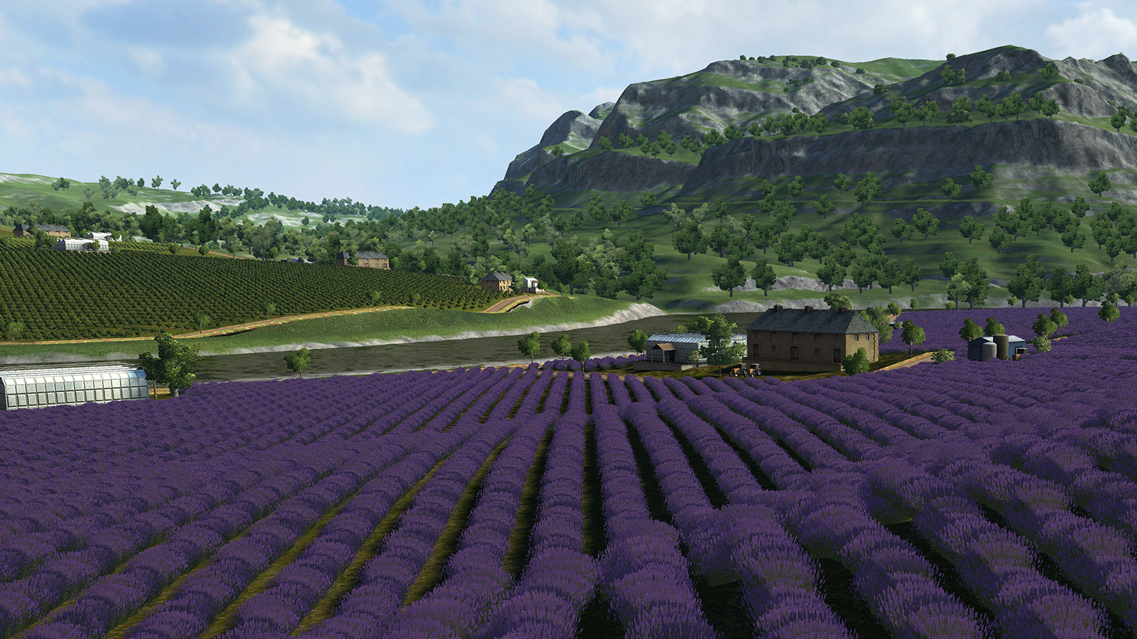 farm09.jpg