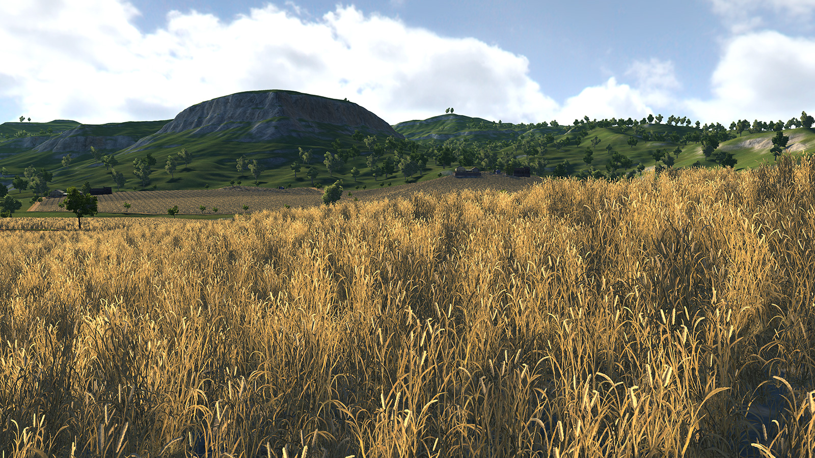 farm10.jpg