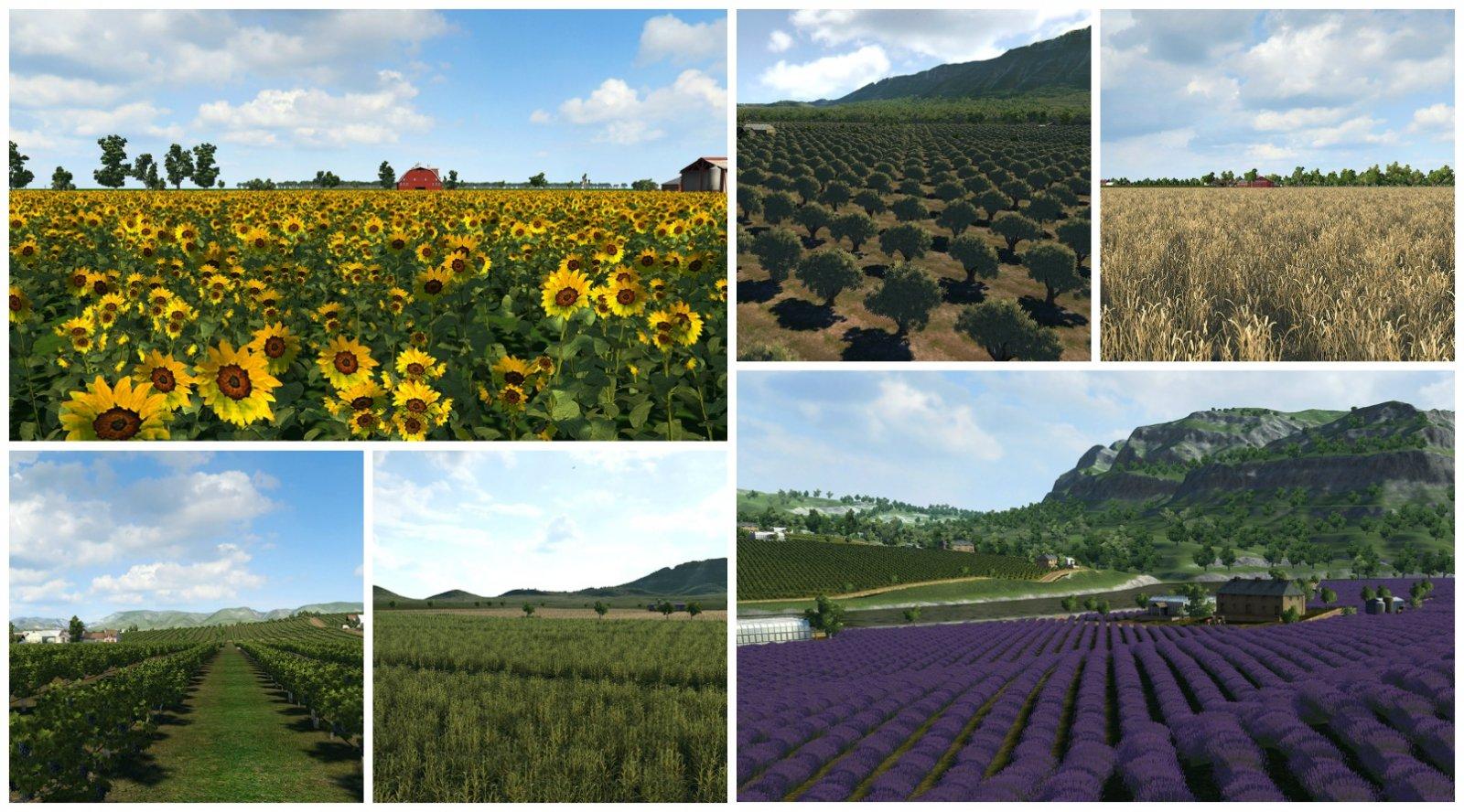 FarmsMain.jpg