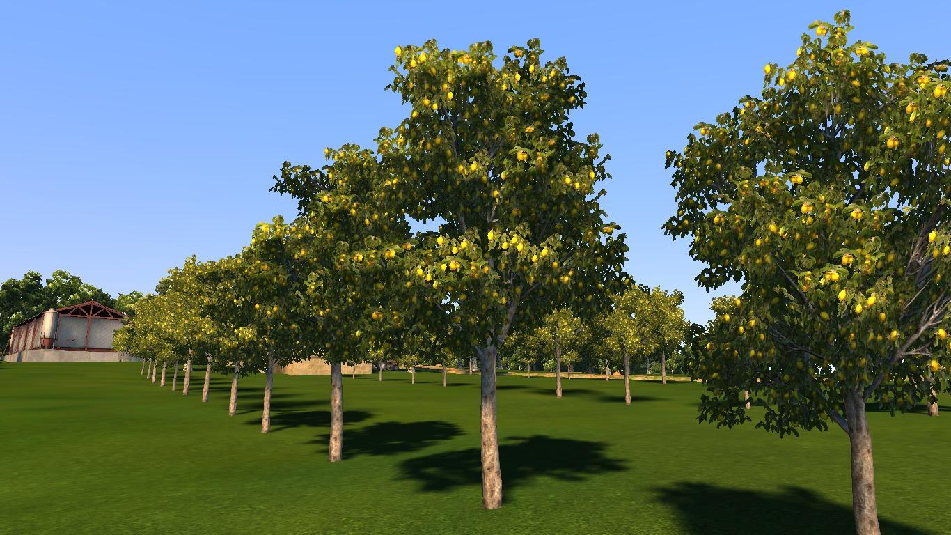lemonfarm.jpg