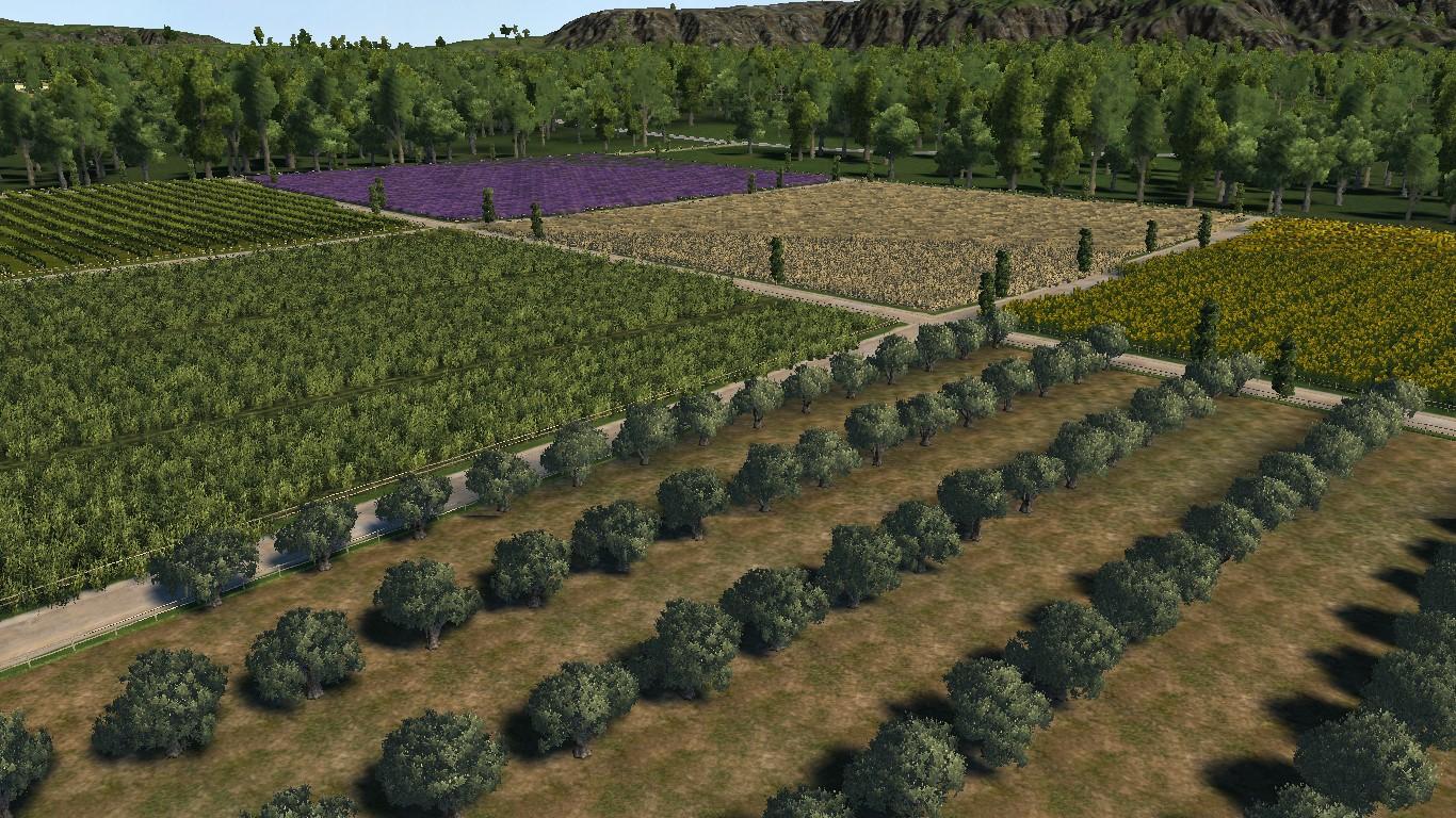 monty_farm_fillers1.jpg