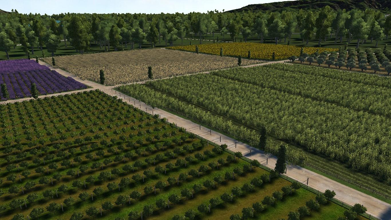 monty_farm_fillers2.jpg