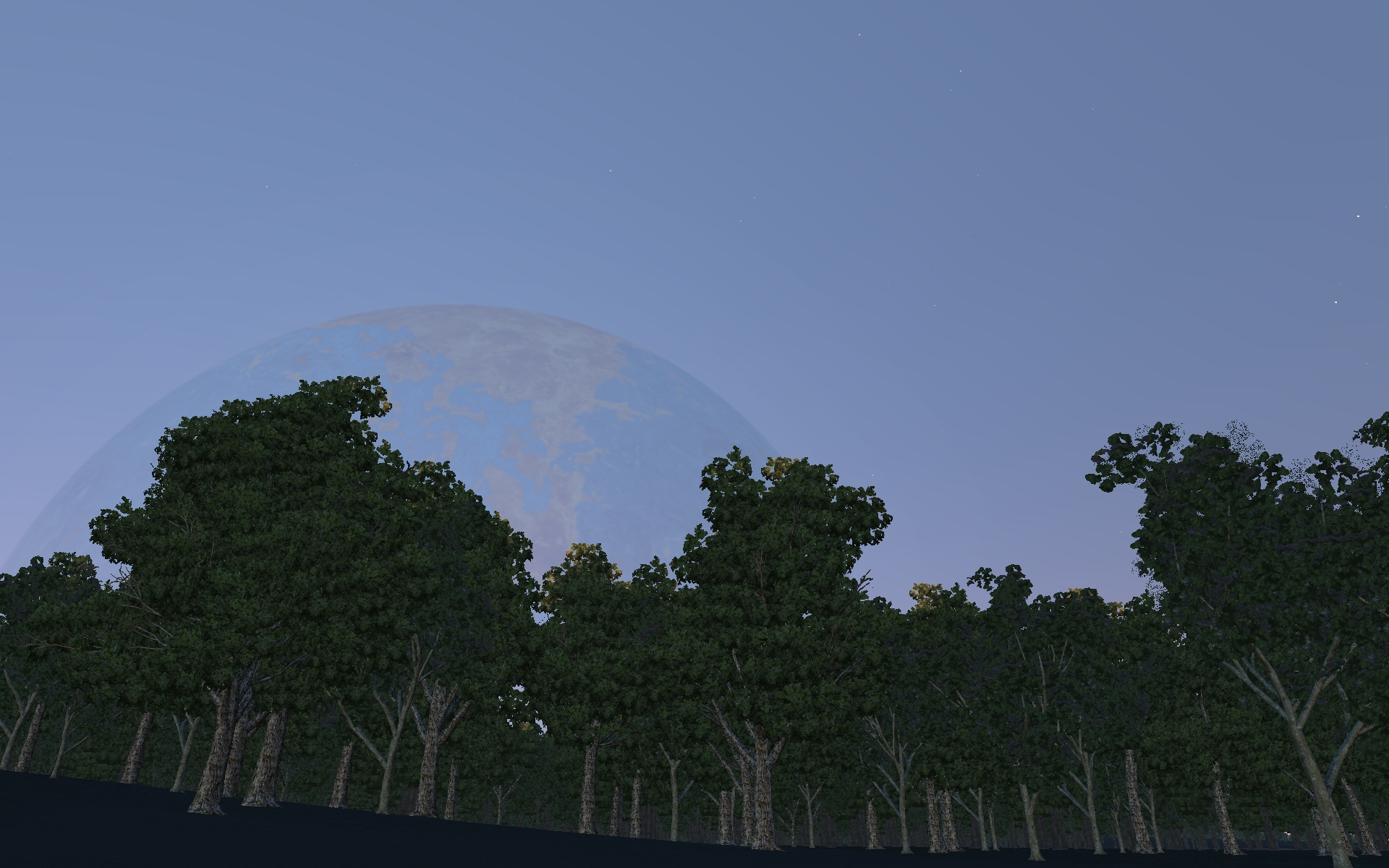 Montys Sees Moon.jpg