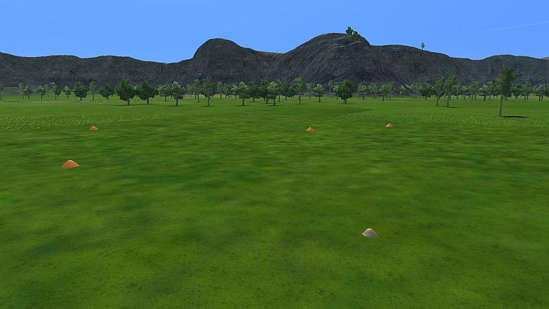 no trees farm.jpg