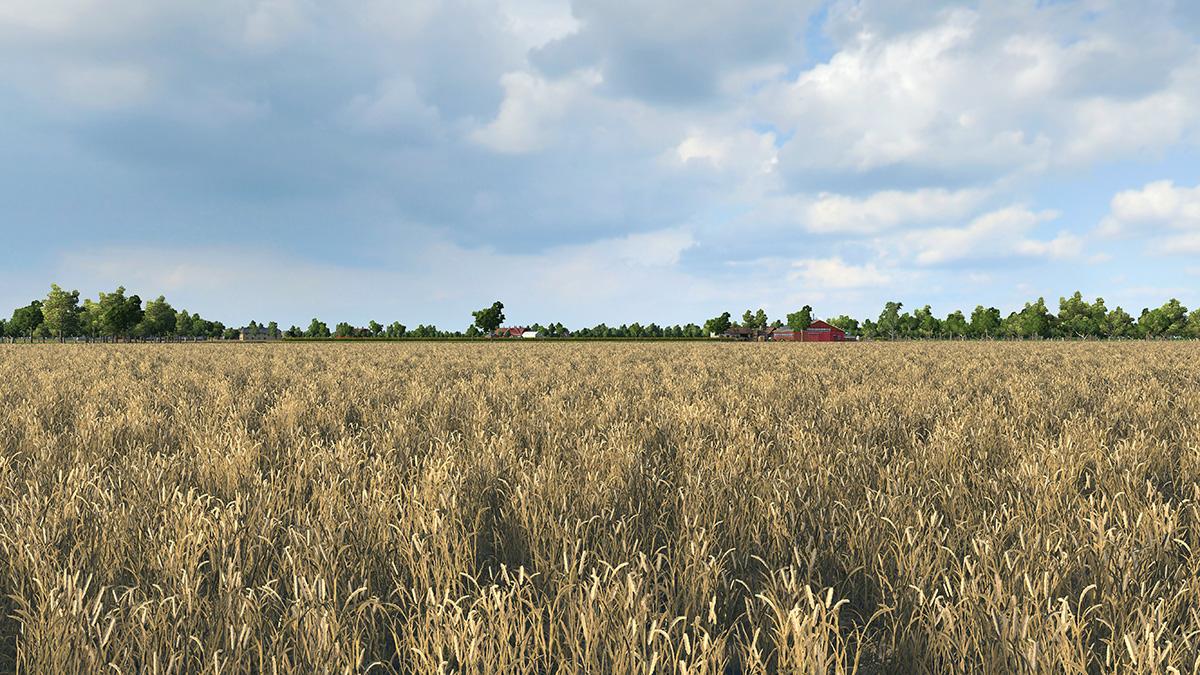 wheatfarm.jpg