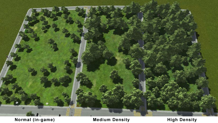 woodedforest01.jpg